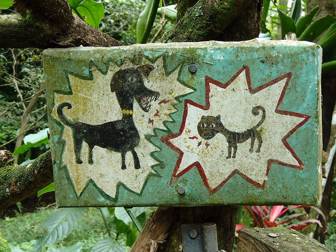 Dog & cat sign