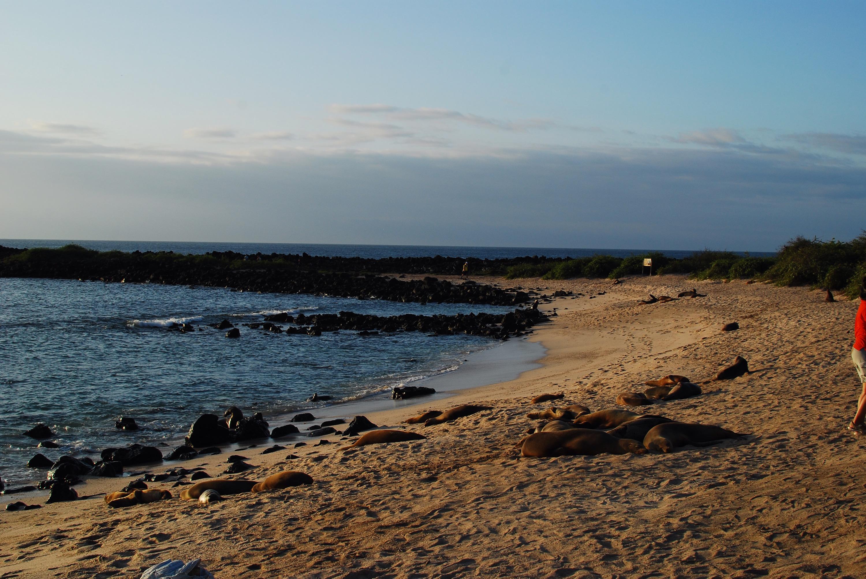 Lover's Beach before sunset