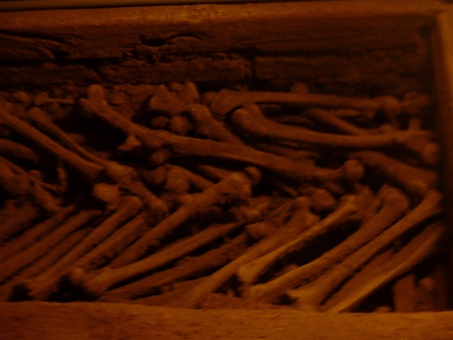 Lots femurs stacked