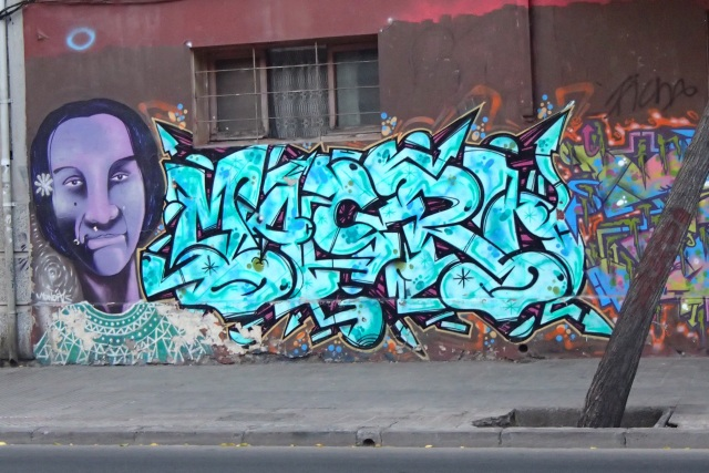 An example of the beautiful artwork on the streets of Santiago, Chile