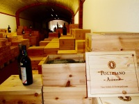 The family's private cellar at Poliziano - yeah I'm jealous